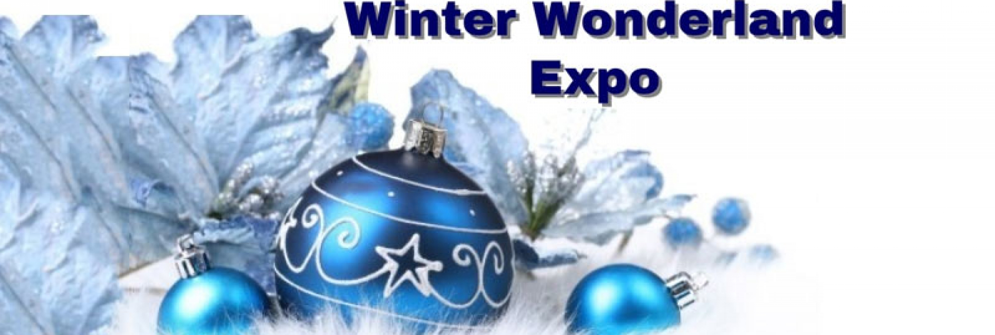 Gabriel's House Winter Wonderland Expo
